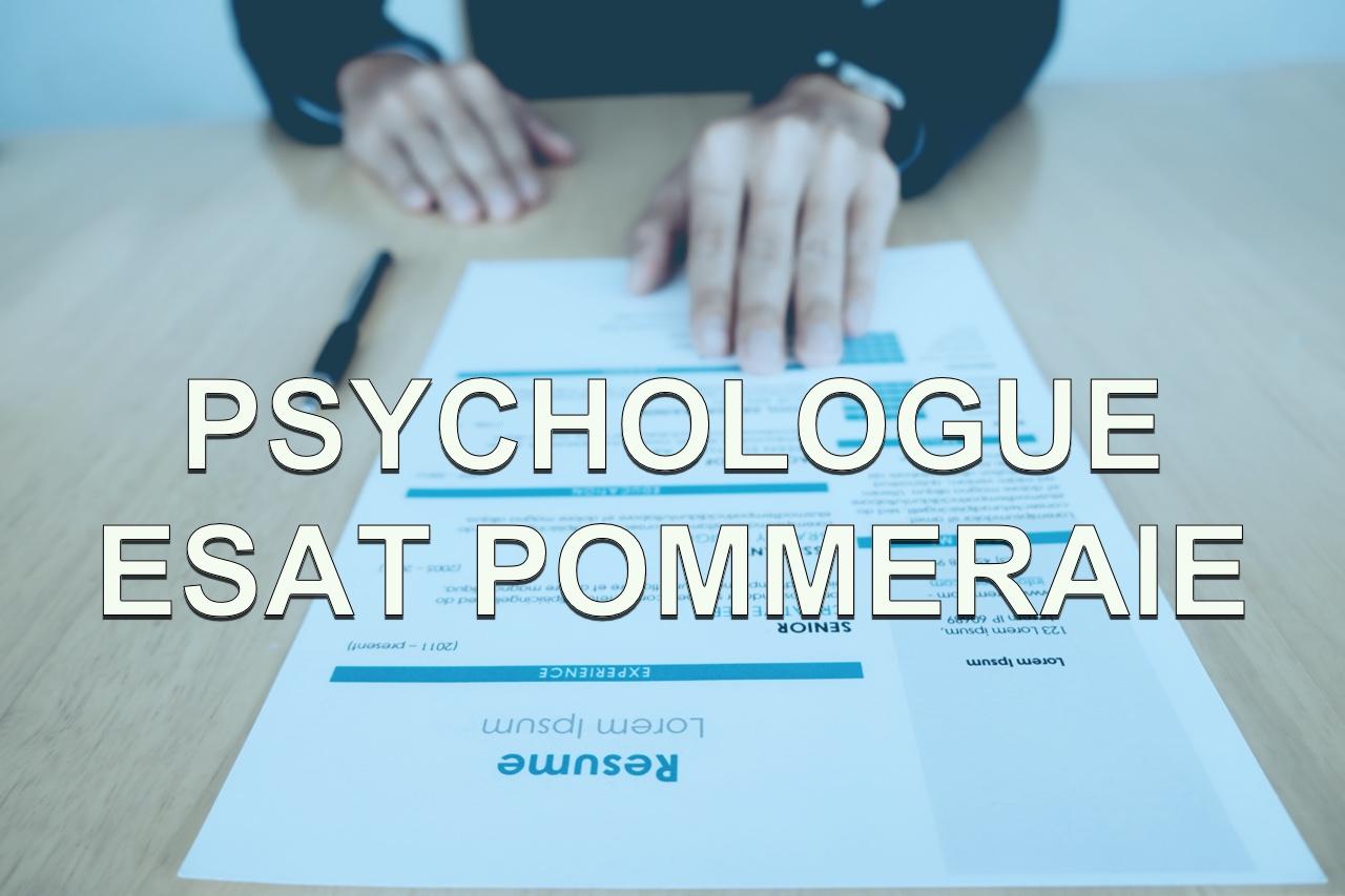 Offre d'emploi psychologue esat pommeraie
