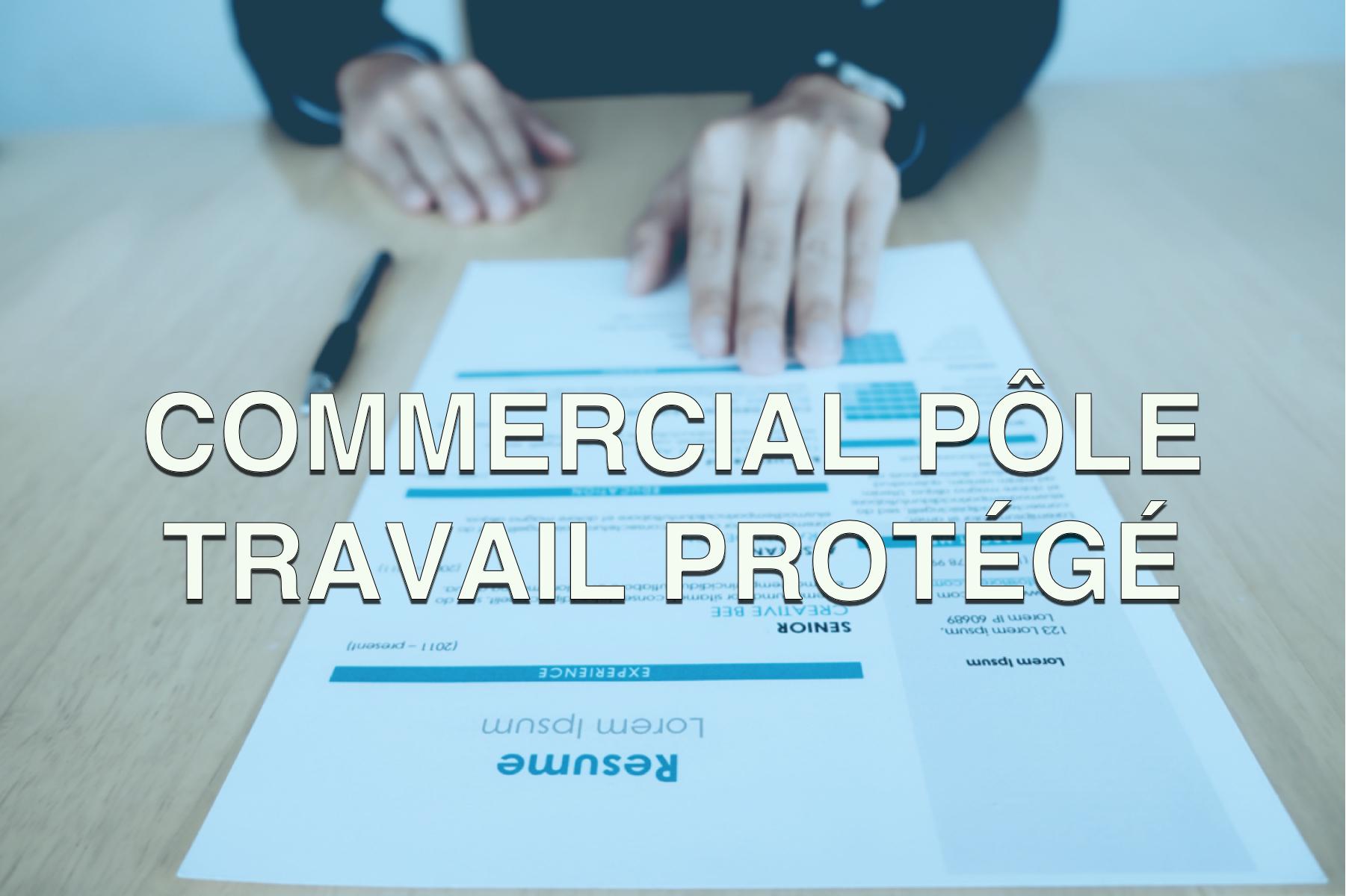 Offre d'emploi commercial pôle travail protégé