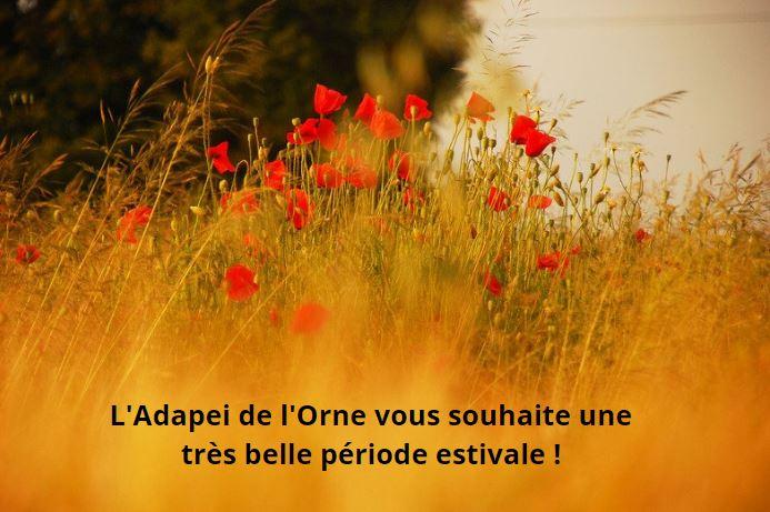 L'Adapei de l'Orne vous souhaite un très bel été. Les services du Siège social à Alençon sont en mode restreint du 9 au 20 août inclus. Réouverture : le lundi 23 août.